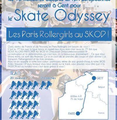 Affiche PRG Roller Derby 2014 SKOD